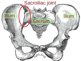 Hip Injury Pain-Sacroiliac Joint